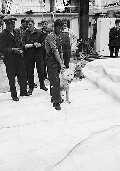 The Polar Expedition of year 1922 had an arctic mascot onboard.