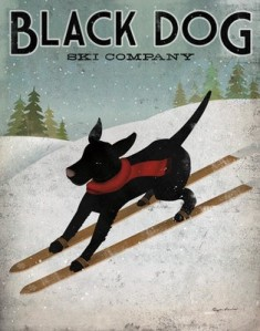 A Black Dog Ski Company's add by Ryan Fowler